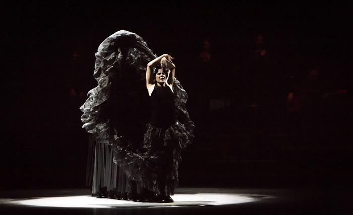 Homenaje al flamenco