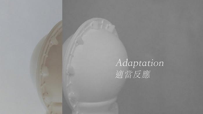 """Ko Sin Tung solo exhibition """"Adaptation"""""""