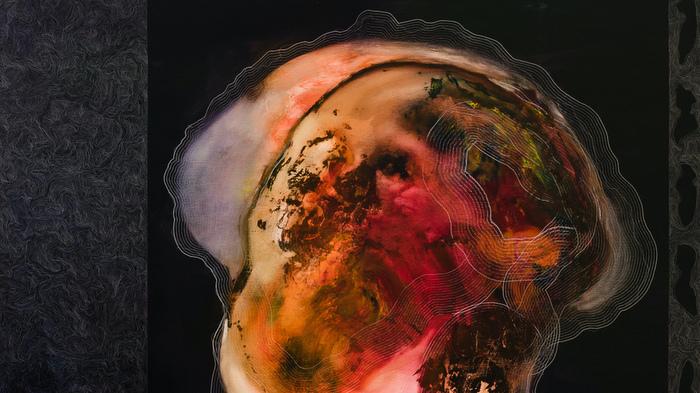 "GR gallery: Johan Van Mullem, ""Apnea"""