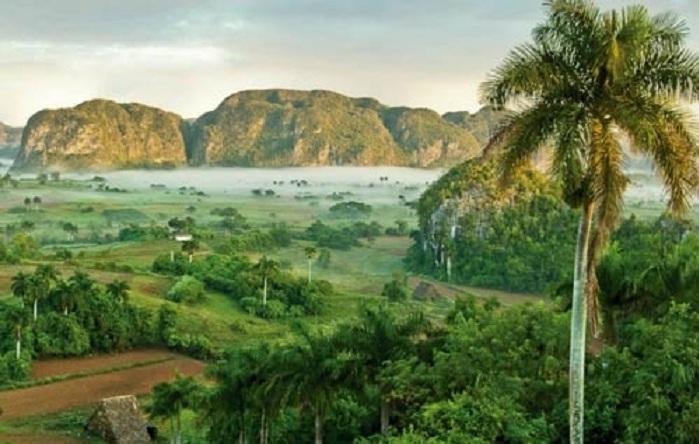 En Cuba la cultura se respira