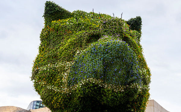Iconic Jeff Koons' Puppy sports a face mask