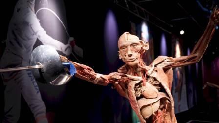 La clase de anatomía que enferma a los visitantes
