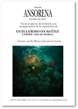 """Exposición """"Caribe"""" de Guillermo Oyágüez en Ansorena"""