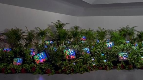Nam June Paik, TV Garden 1974-77 (2002) Single-channel video installation with live plants and color television monitors; color, sound Courtesy Kunstsammlung Nordrhein-Westfalen, Dusseldorf