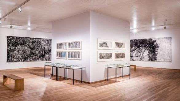 Jan Hendrix: Tierra Firme, Bonnefantenmuseum Maastricht Photo © Manor Lux