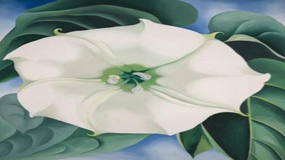 Georgia O'Keeffe, Jimson Weed, White Flower No. 1, 1932.  Crystal Bridges Museum of American Art (Arkansas, USA) © 2016 Georgia O'Keeffe Museum/ DACS, London